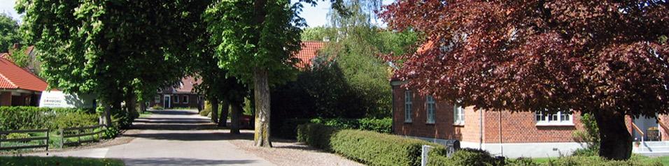 http://www.gjerrild.net/uploads/images/Topbilleder/By-alle.jpg